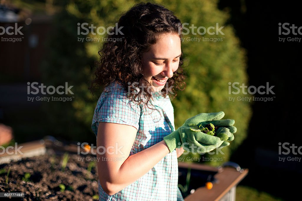 Young adult ethnic female holding small plant in gloved hands stock photo