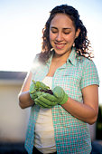Young adult female gloved hands inspecting a young plant