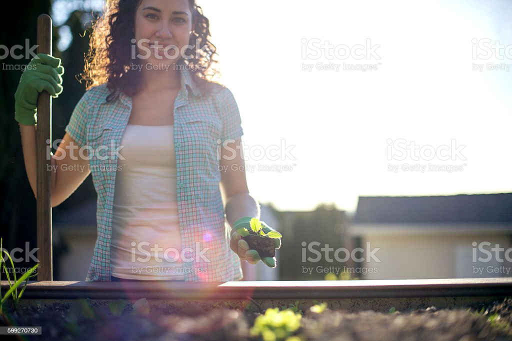 Young adult female holding a young plant stock photo