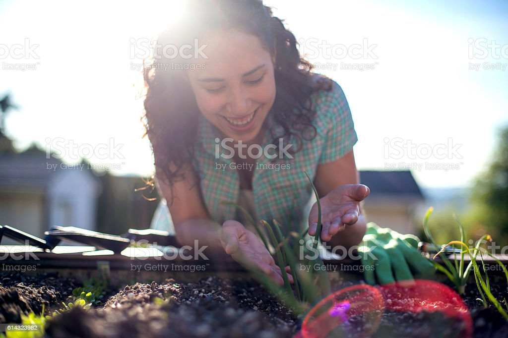 Young adult female looking at her garden bed stock photo