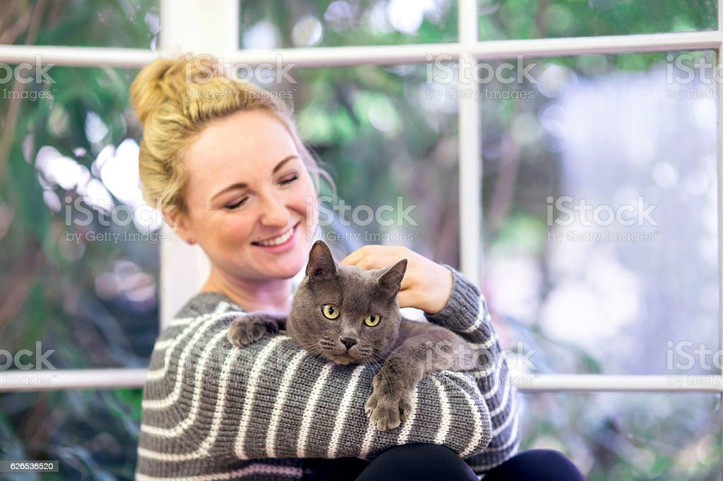 Young adult female smiling while petting her grey house cat stock photo