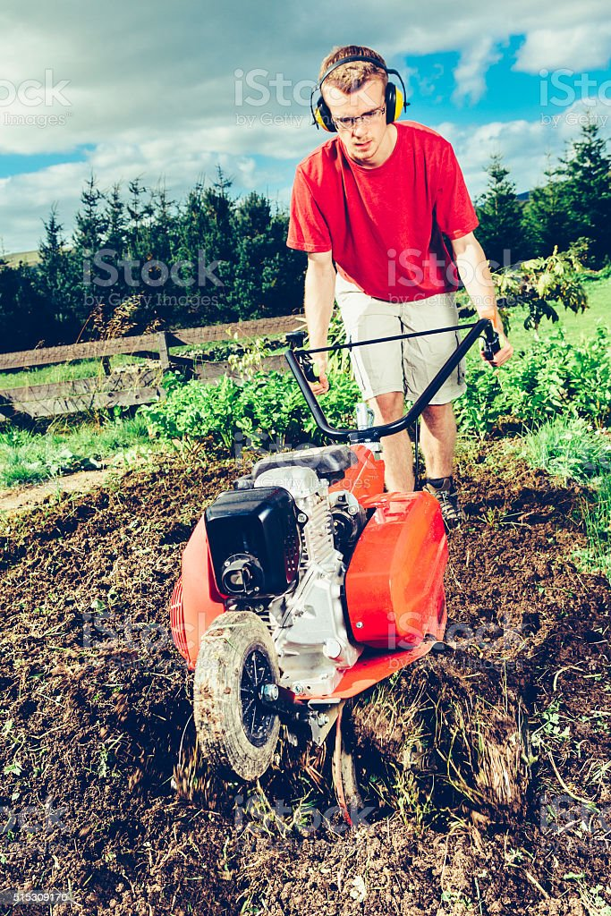 Young adult using garden rotavator stock photo