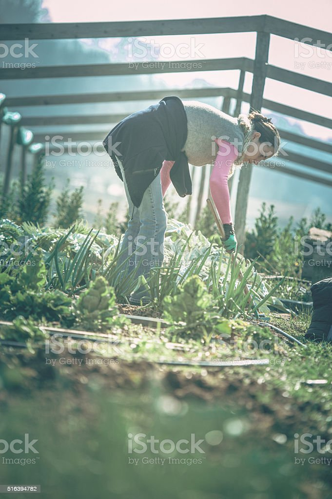 Young Adult Woman Gardening stock photo