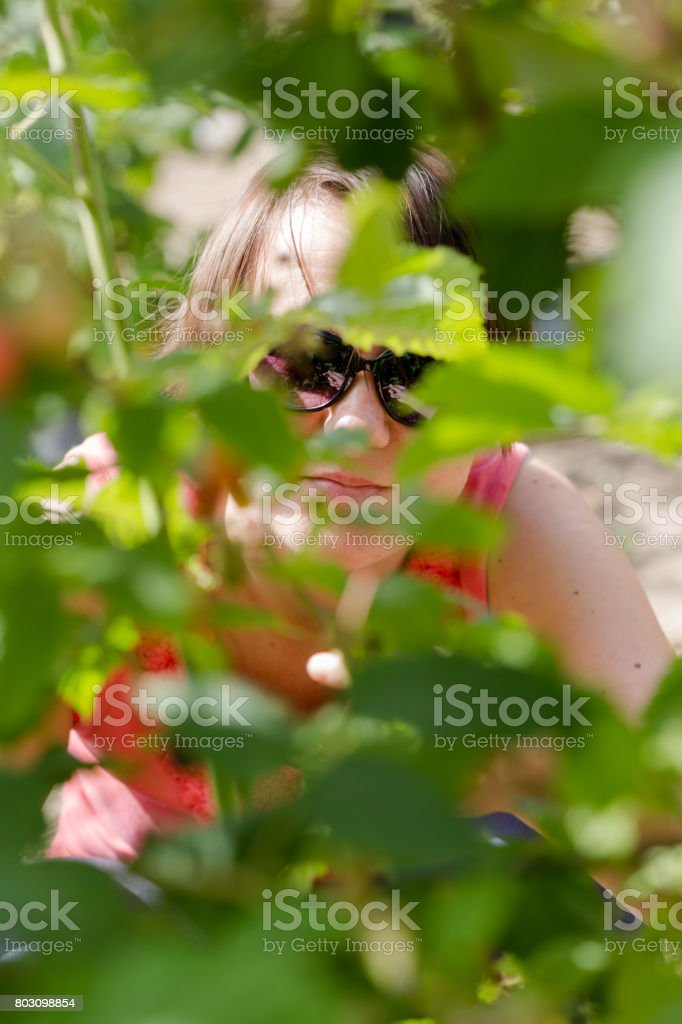 Young adult woman picking raspberries and hides behind bush stock photo