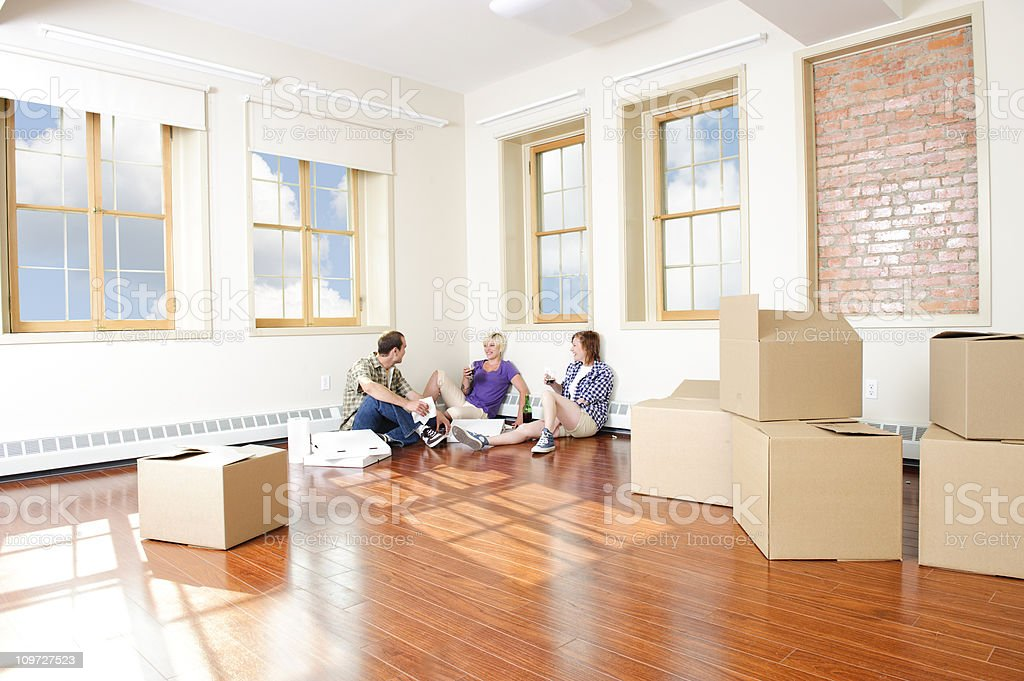 Young Adults Moving House royalty-free stock photo