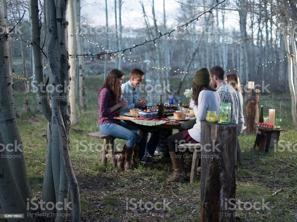 Young adults praying at outdoor party in forest stock photo