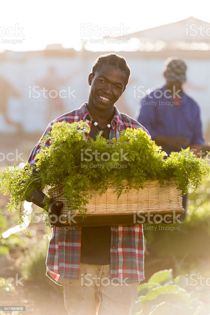 Young African man holding vegetables basket stock photo