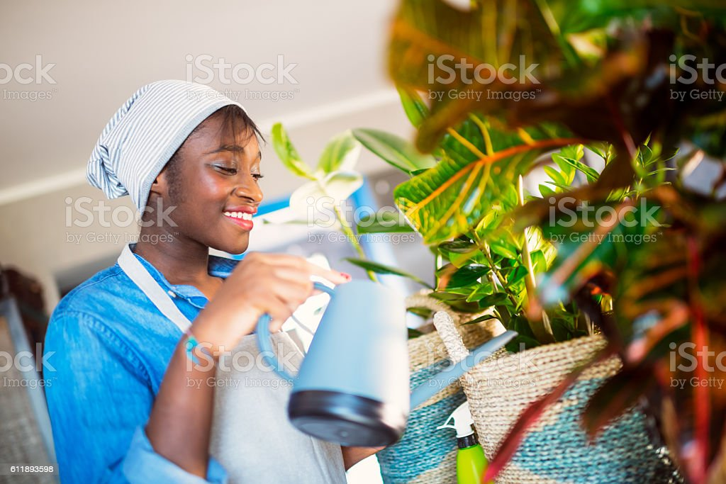 Young African women with her houseplants stock photo