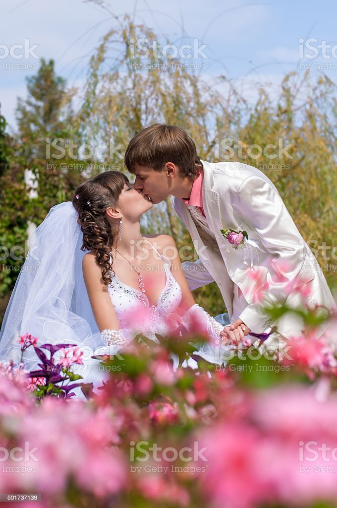 Young and beautiful bride and groom stock photo