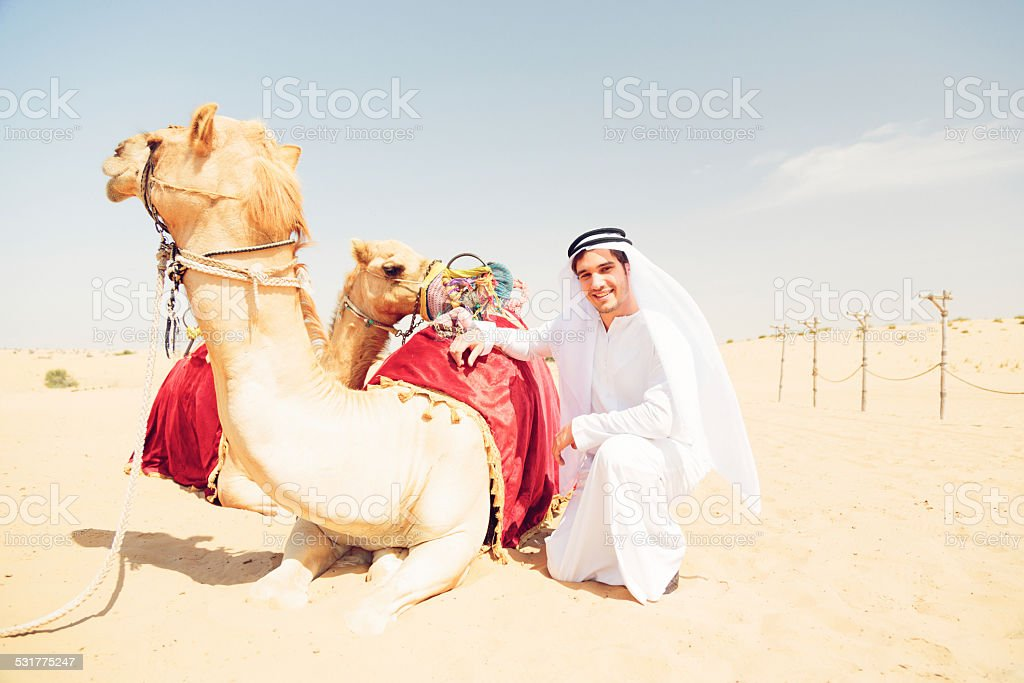 young arabian man with his camels stock photo