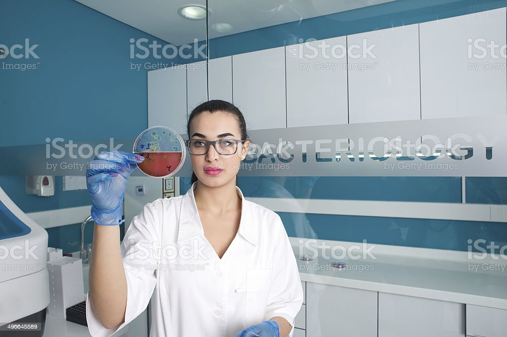 young attractive laboratory assistant check petri dish royalty-free stock photo