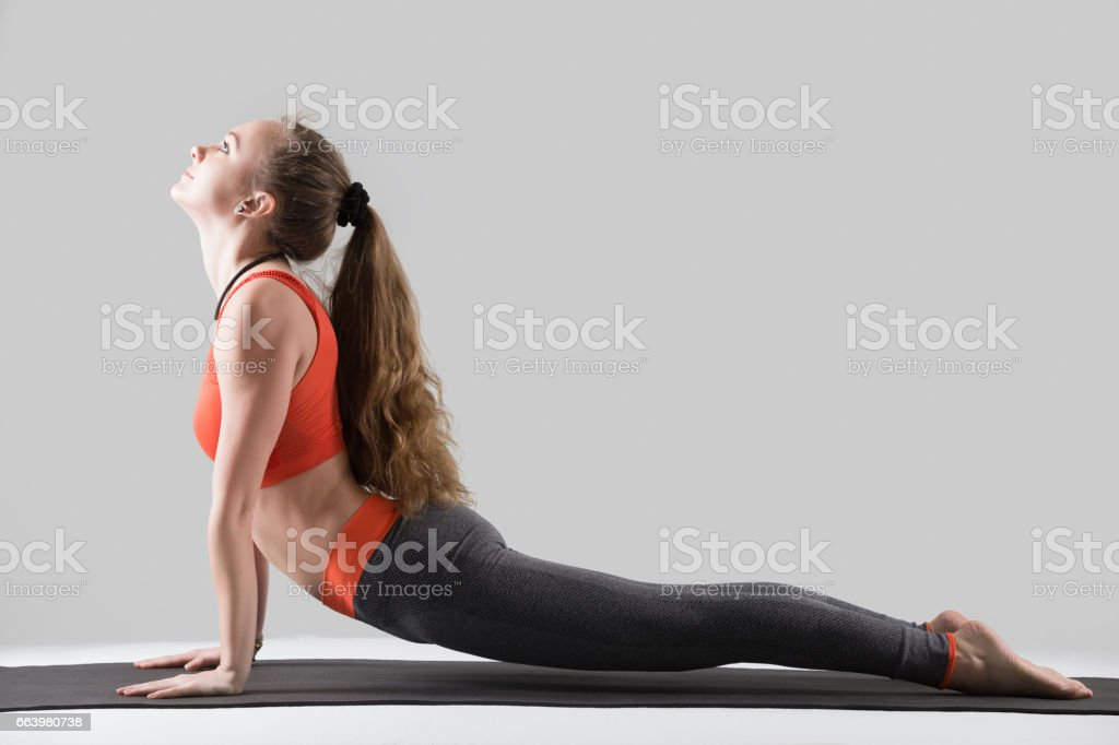 Young attractive woman in upward facing dog pose, grey studio stock photo
