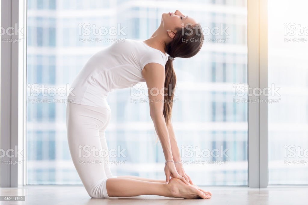 Young attractive woman in Ustrasana pose against floor window stock photo