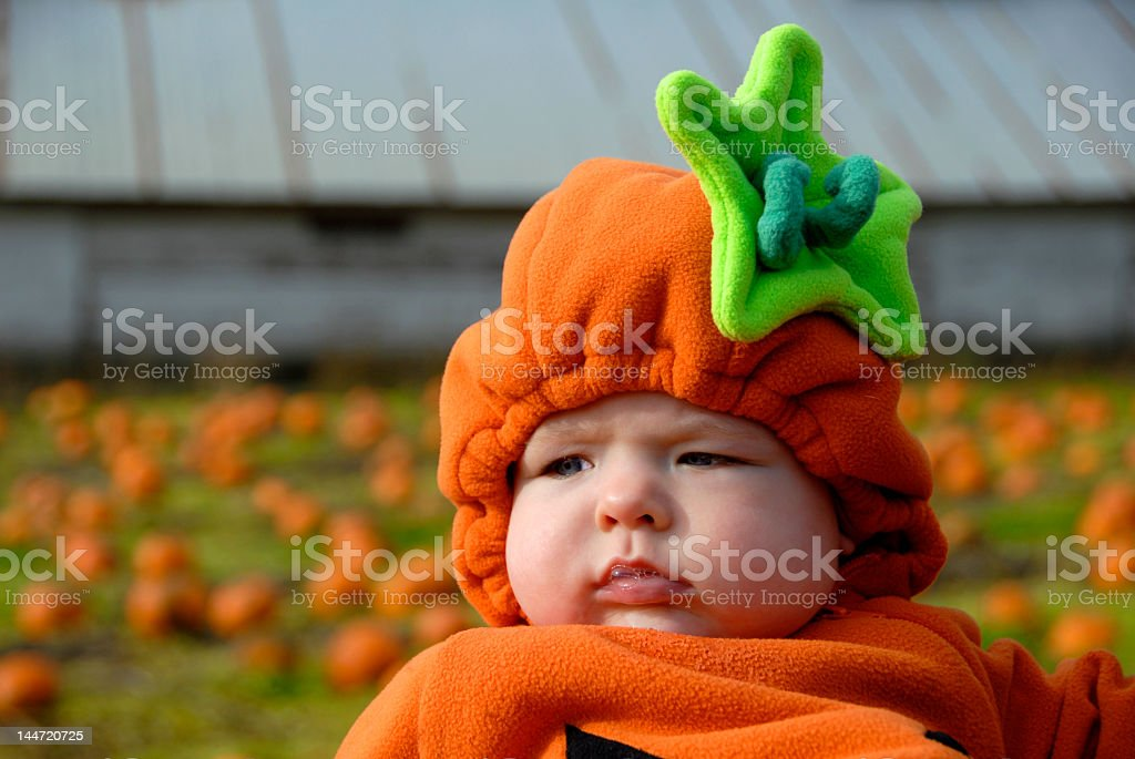 Young baby dressed as a pumpkin in a pumpkin patch stock photo