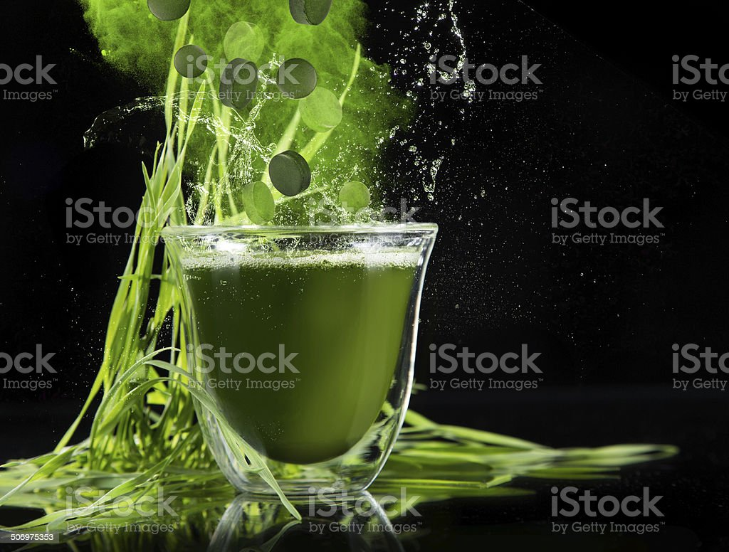 Young barley, chlorella superfood. stock photo