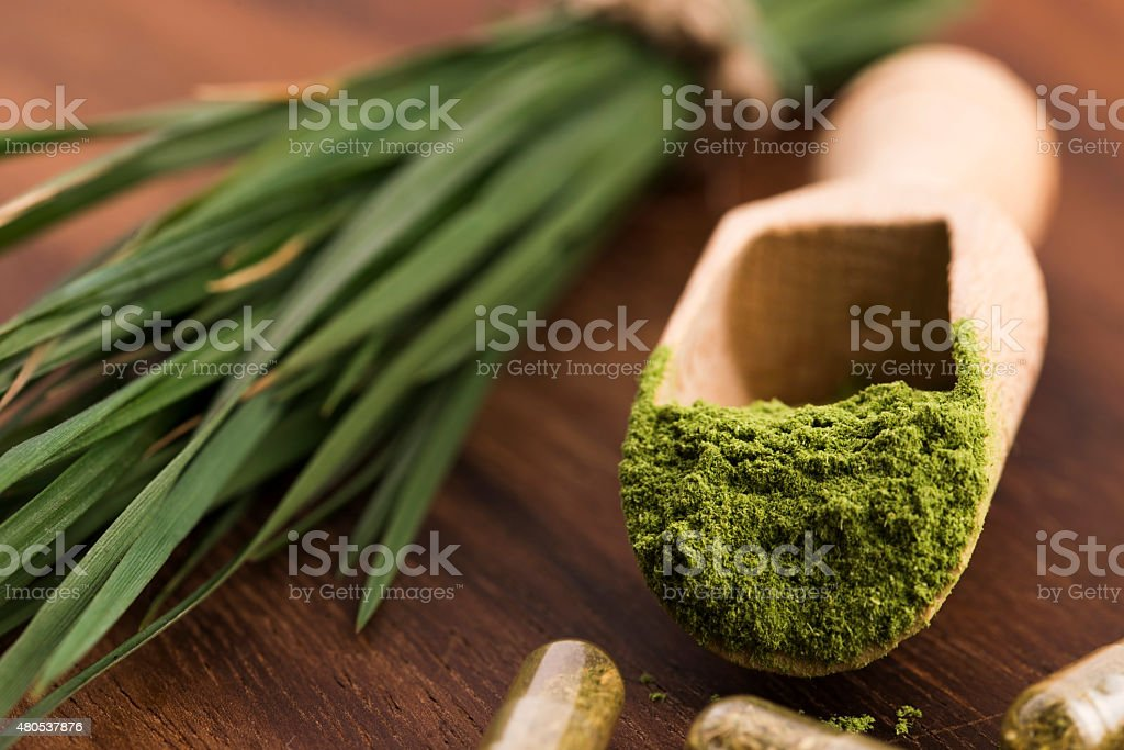 Young barley grass. Detox superfood. stock photo