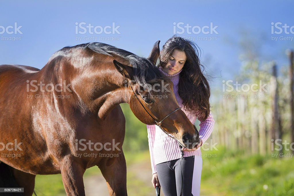 Young beautiful girl standing with a horse in field stock photo