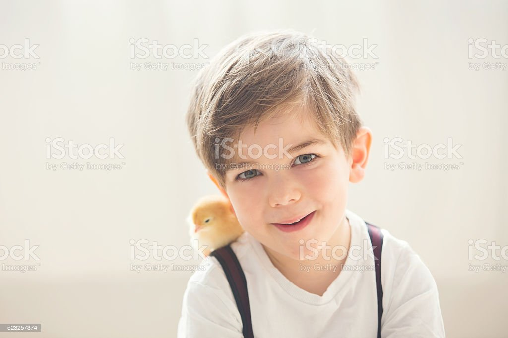 Young beautiful prechool boy, playing with little newborn chick stock photo