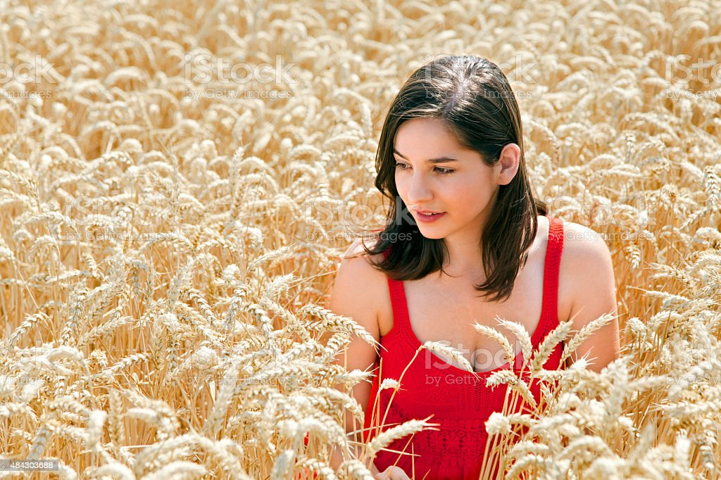 Young beautiful woman in the middle field of wheat stock photo
