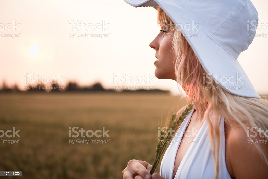 Young beautiful woman in wheat field royalty-free stock photo