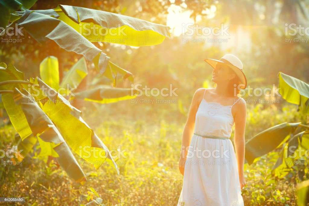 Young beautiful woman tourist in a white dress walks in tropical jungle overgrown with palm trees stock photo