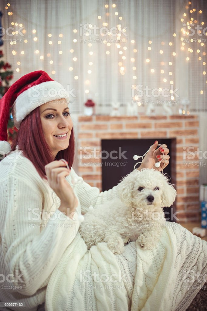 Young beautiful woman with dog in a Christmas setting stock photo