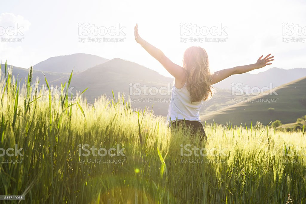 young beautiful woman with hands raised in the wheat field stock photo