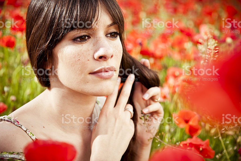 Young beauty in poppy field at sunset royalty-free stock photo
