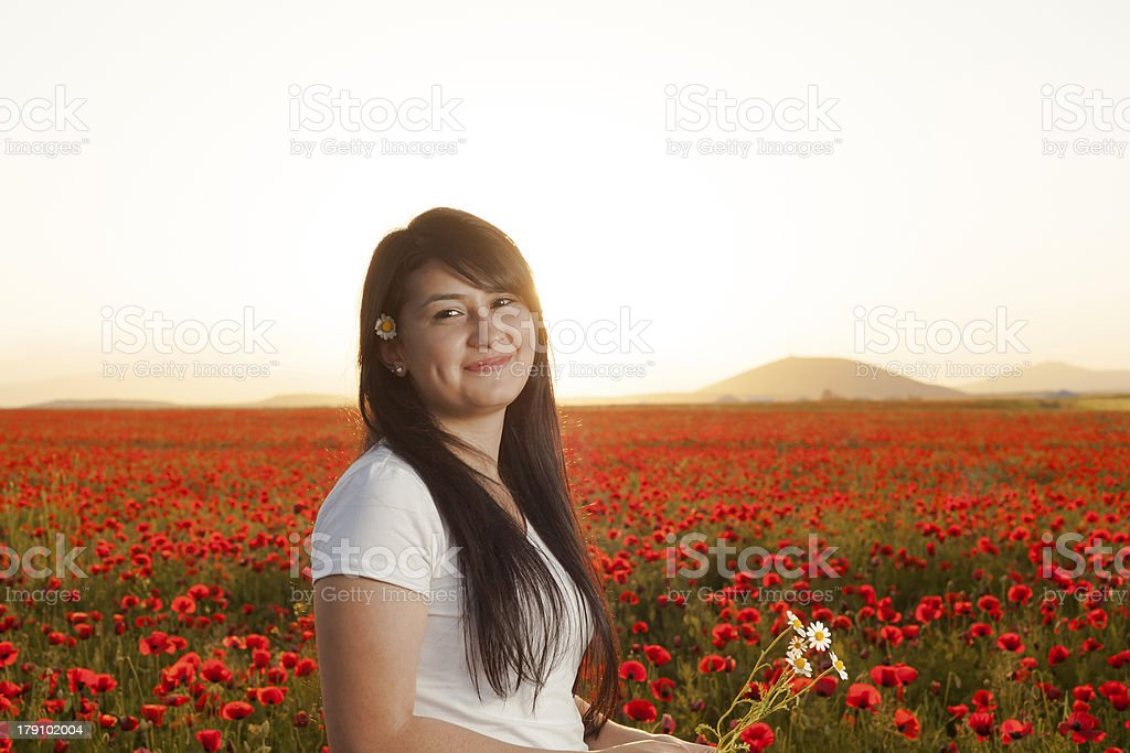 young beauty in poppy field at sunset stock photo