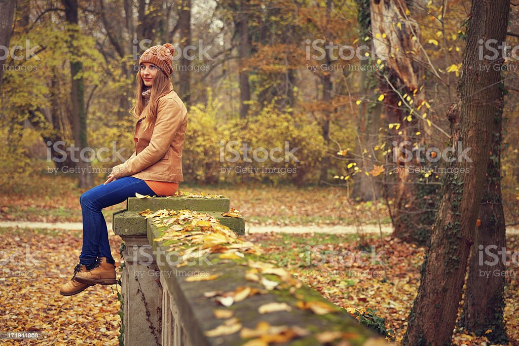 young beauty in the autumn park royalty-free stock photo