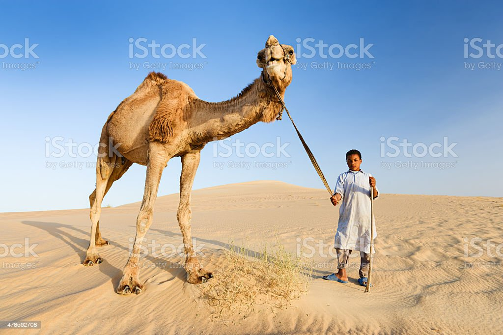 Young bedouin with camel on Western Sahara Desert in Africa stock photo