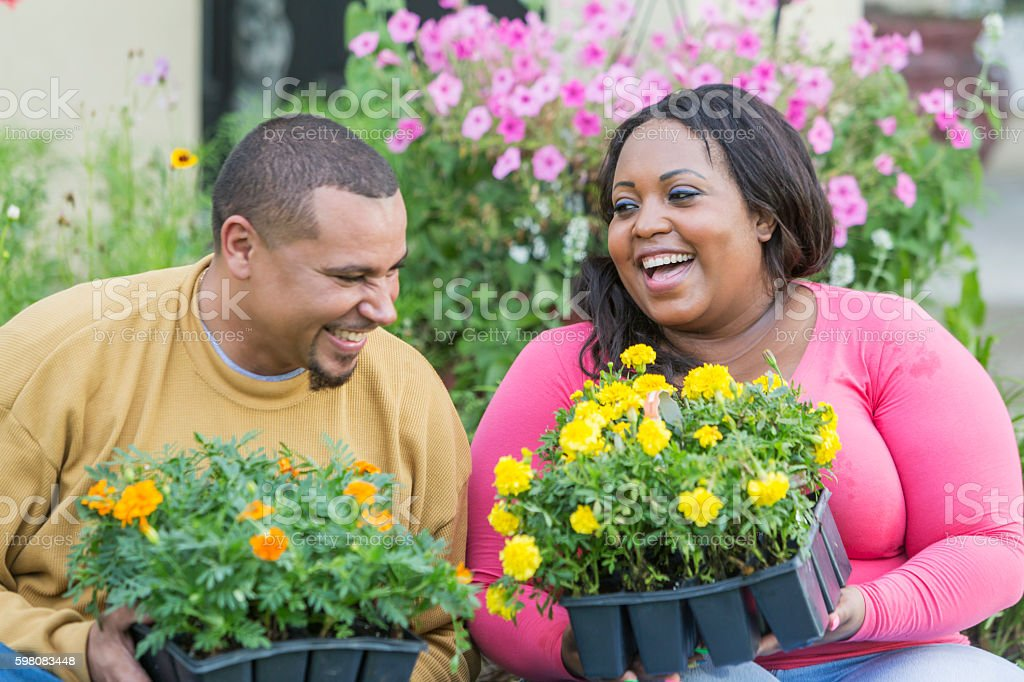 Young black couple outside home planting flowers stock photo