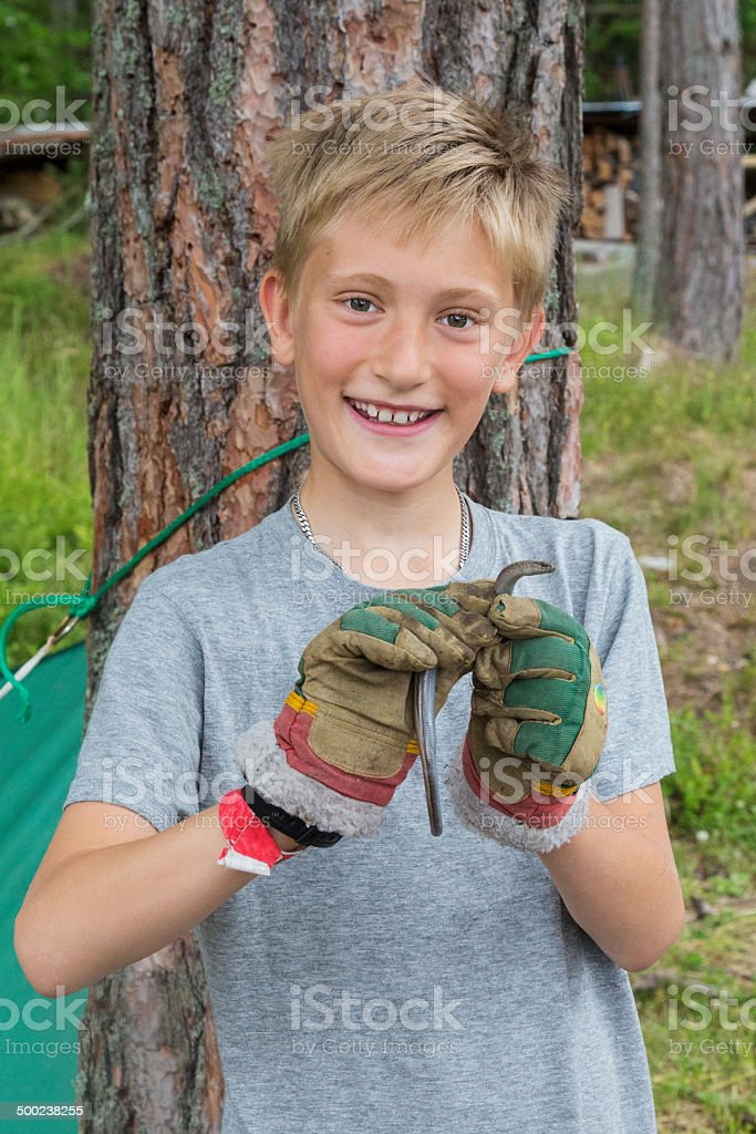 Young, blond, smiling boy with snake (slow worm). stock photo