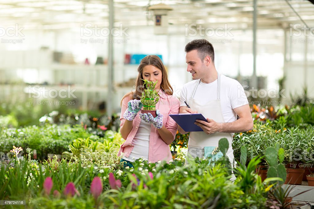 Young botanists  in greenhouse stock photo