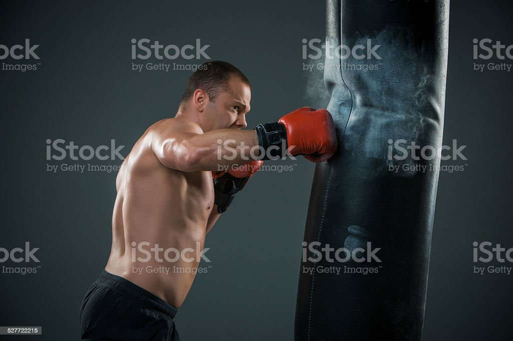 Young Boxer fighter stock photo
