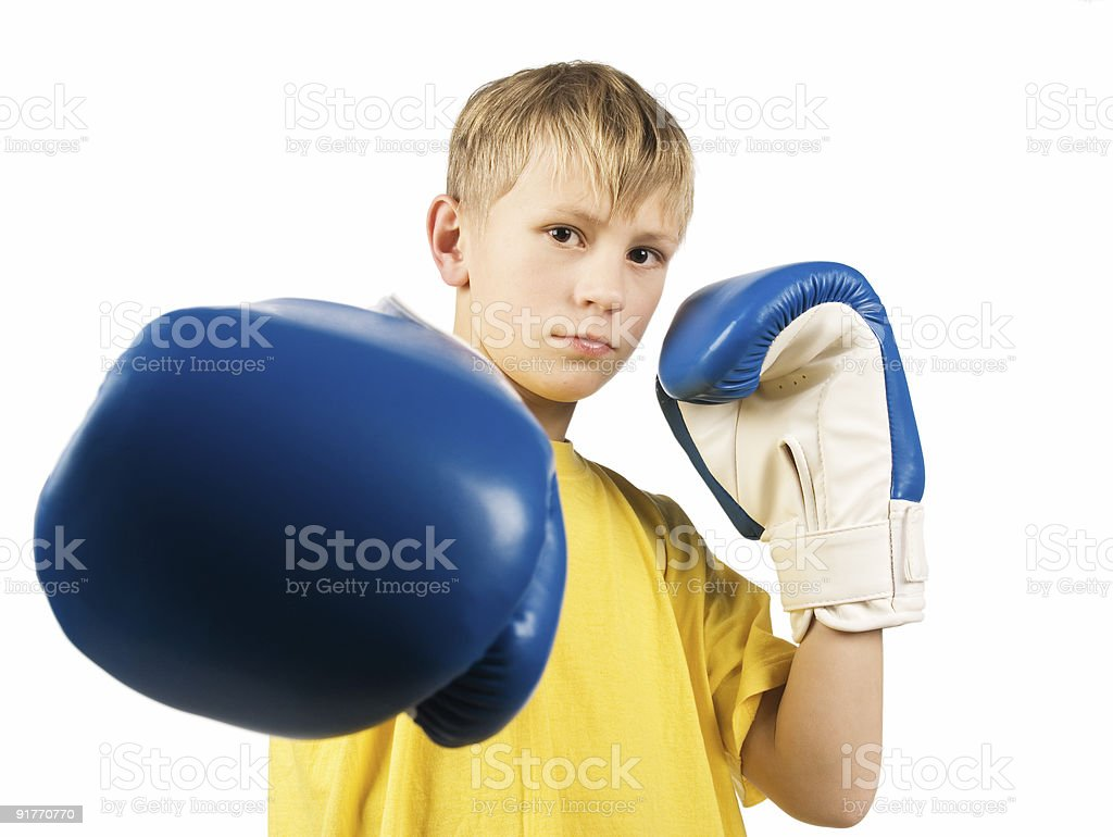 Young boxer royalty-free stock photo