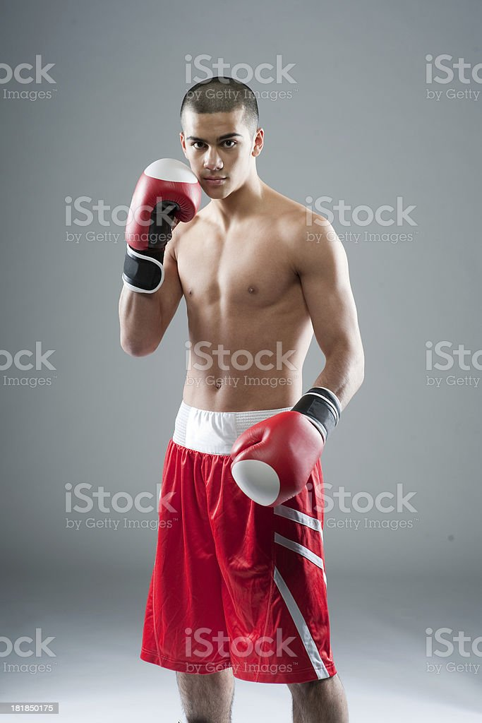 young boxer with red shorts royalty-free stock photo