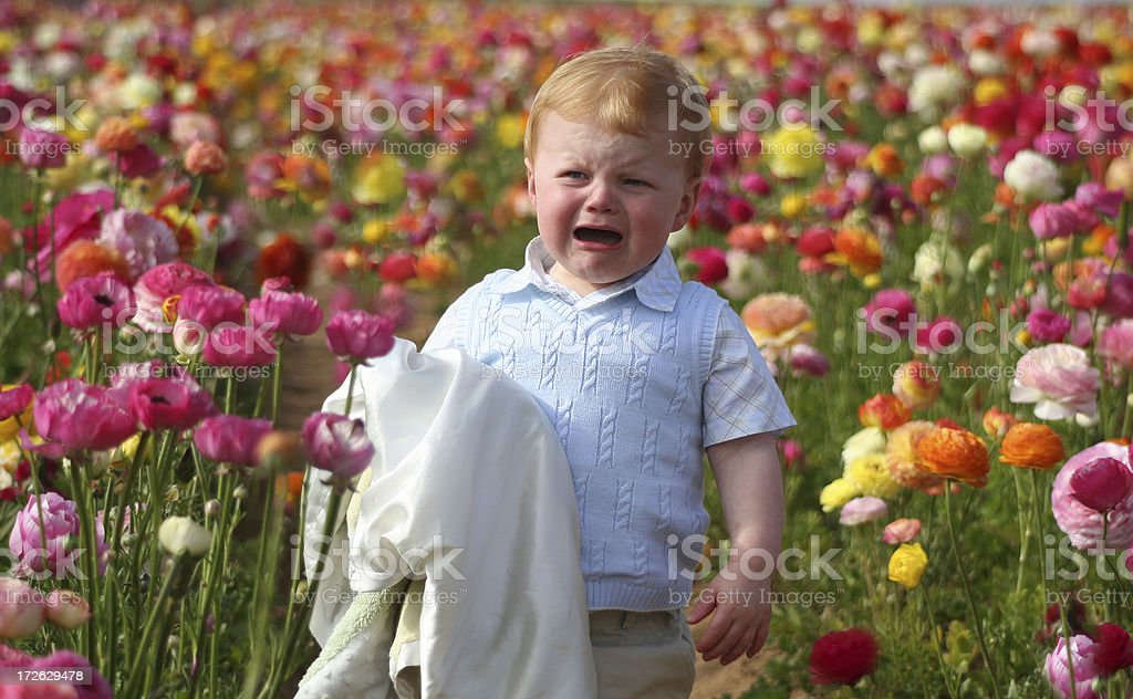 young boy amongst flowers royalty-free stock photo