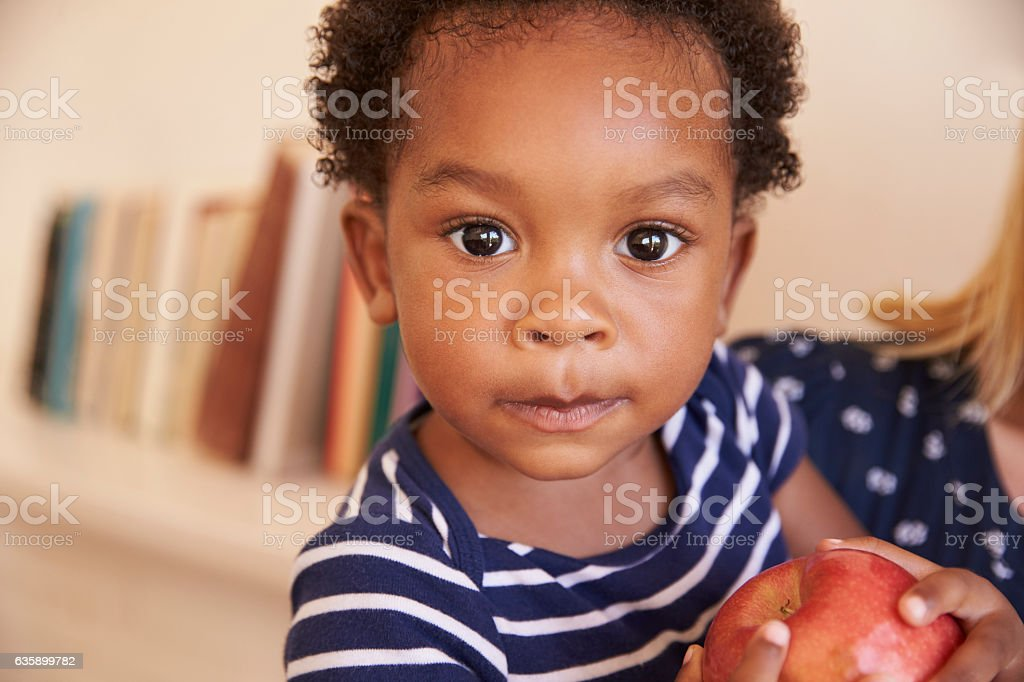 Young Boy Eating Red Apple At Home stock photo