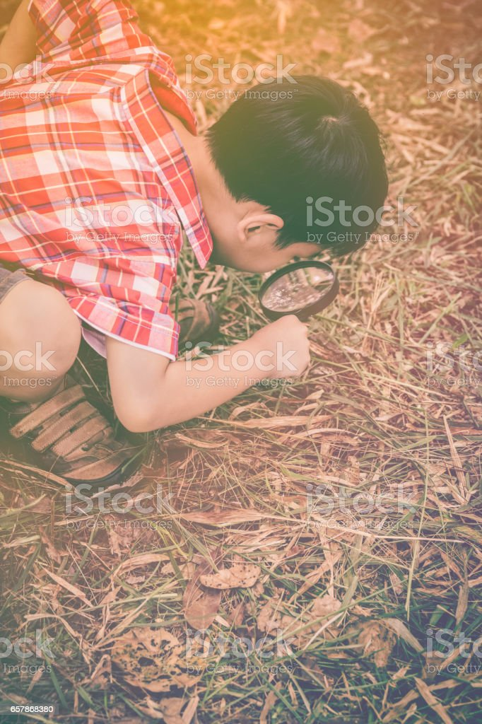 Young boy exploring nature with magnifying glass. stock photo