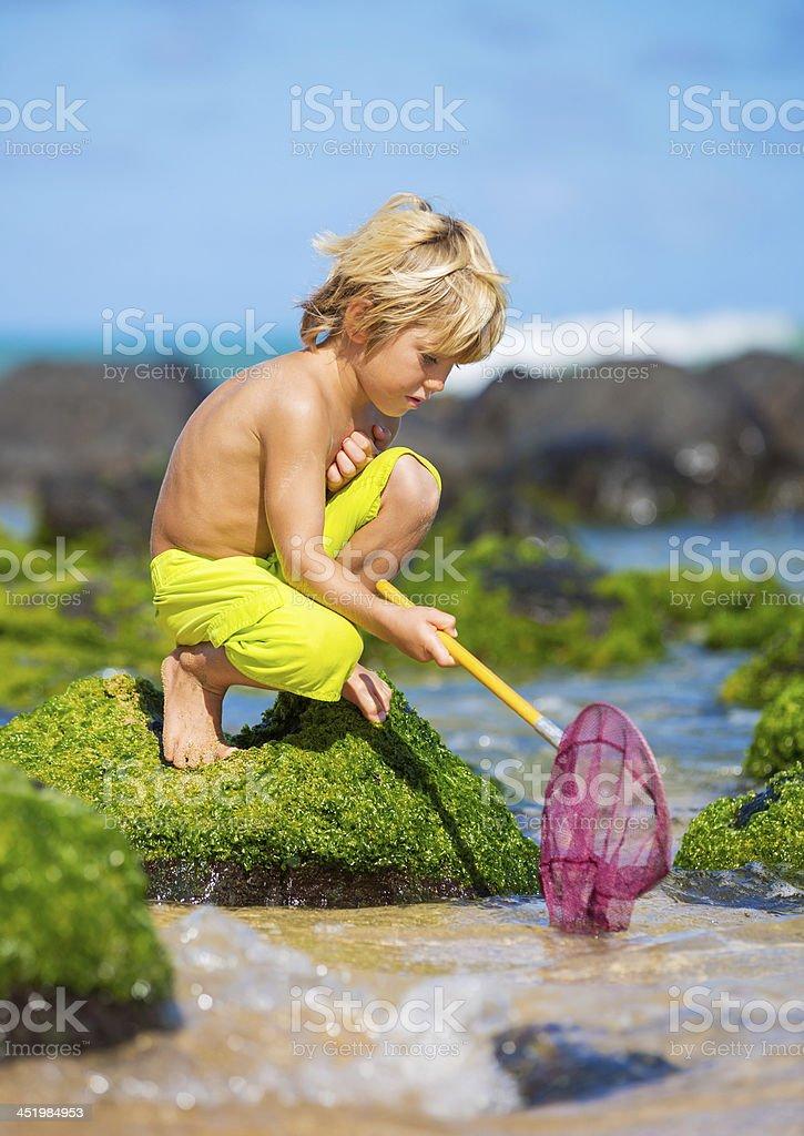 Young boy having fun on tropcial beach stock photo