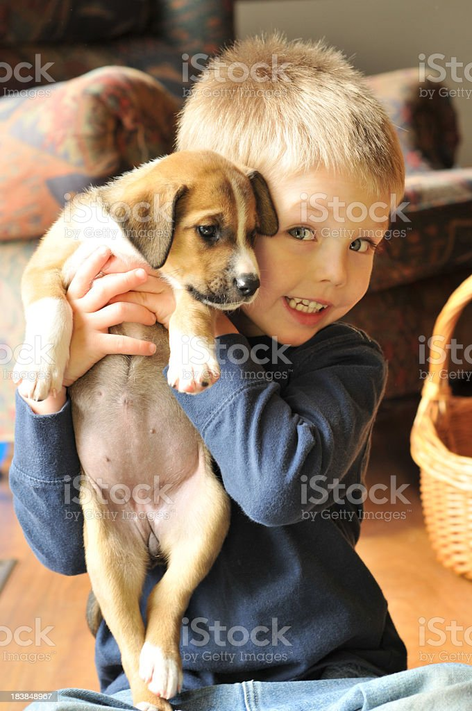 A young boy in a blue jumper holding a puppy and smiling royalty-free stock photo