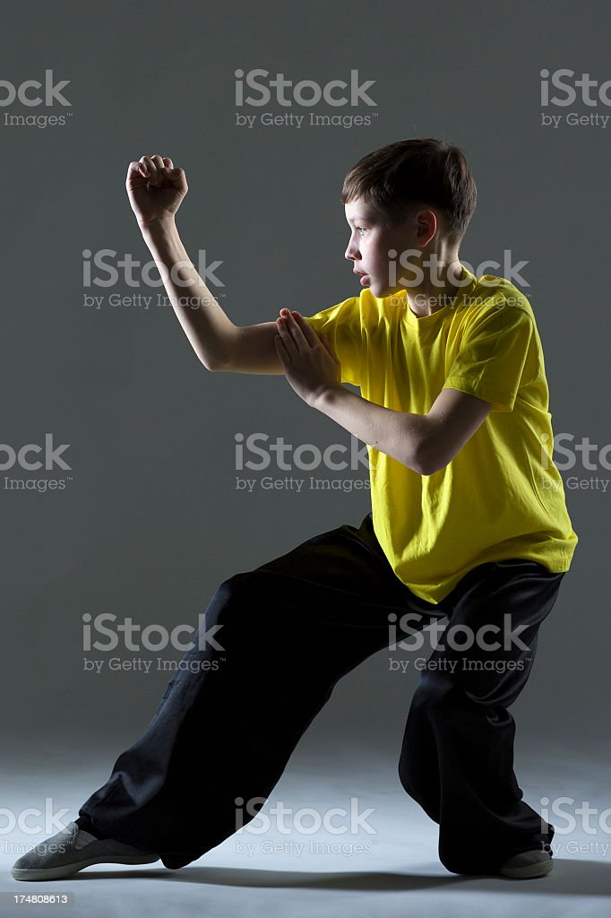 Young Boy in Kung Fu fighting position stock photo