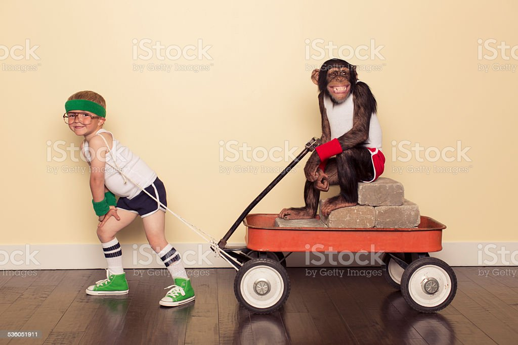 Young Boy in Retro Workout Clothes Pulls Chimpanzee stock photo
