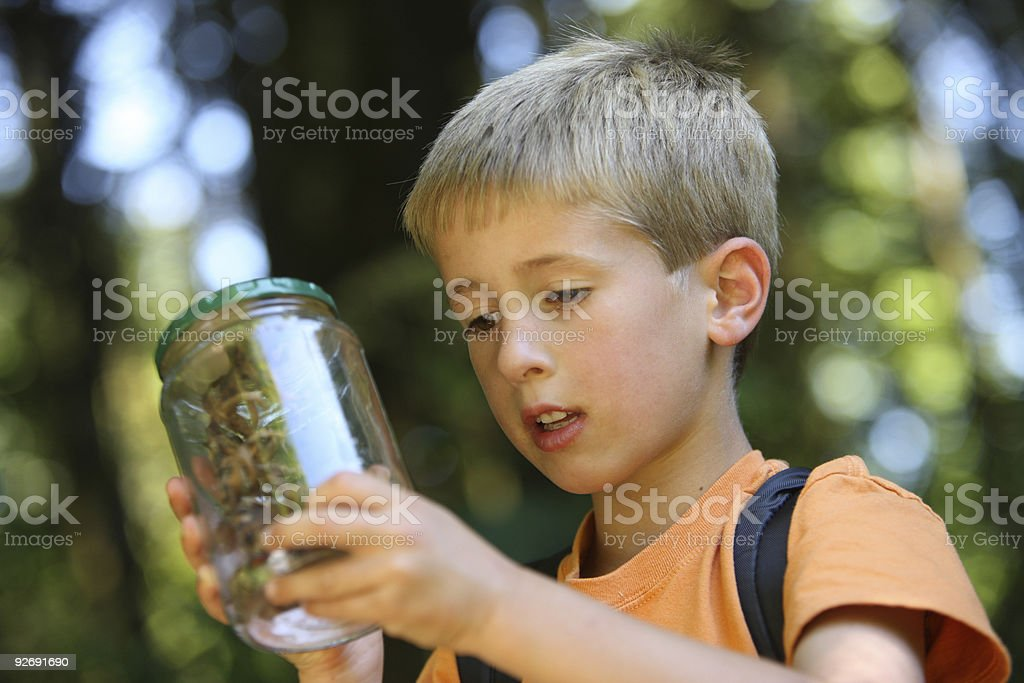 Young boy looking at insect in jar with forest in background stock photo