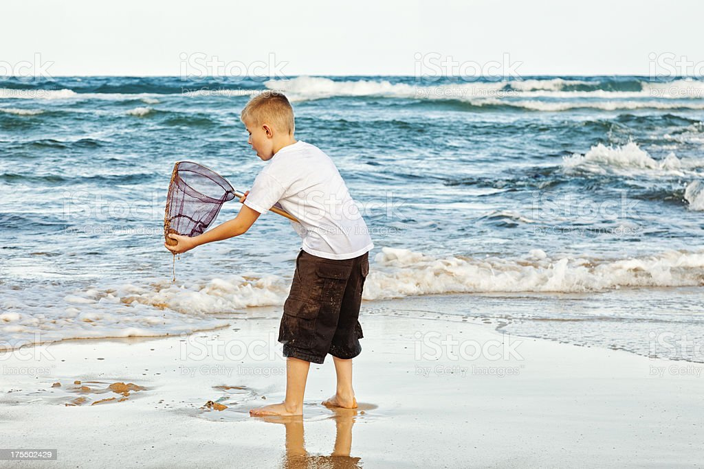 Young Boy on Beach Catching Fish with Net royalty-free stock photo