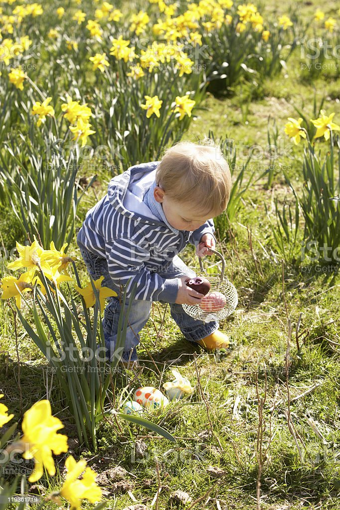 Young Boy On Easter Egg Hunt In Daffodil Field stock photo
