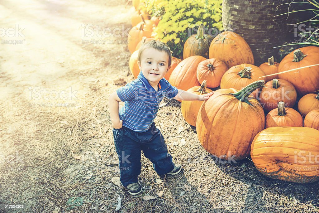 Young Boy Picking Out a Pumpkin stock photo