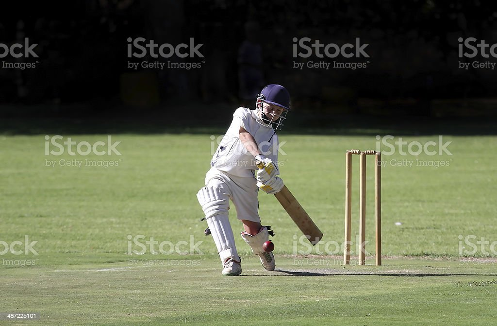 Young boy playing cricket shot stock photo