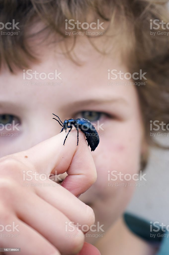 Young Boy Playing With A Beetle. stock photo